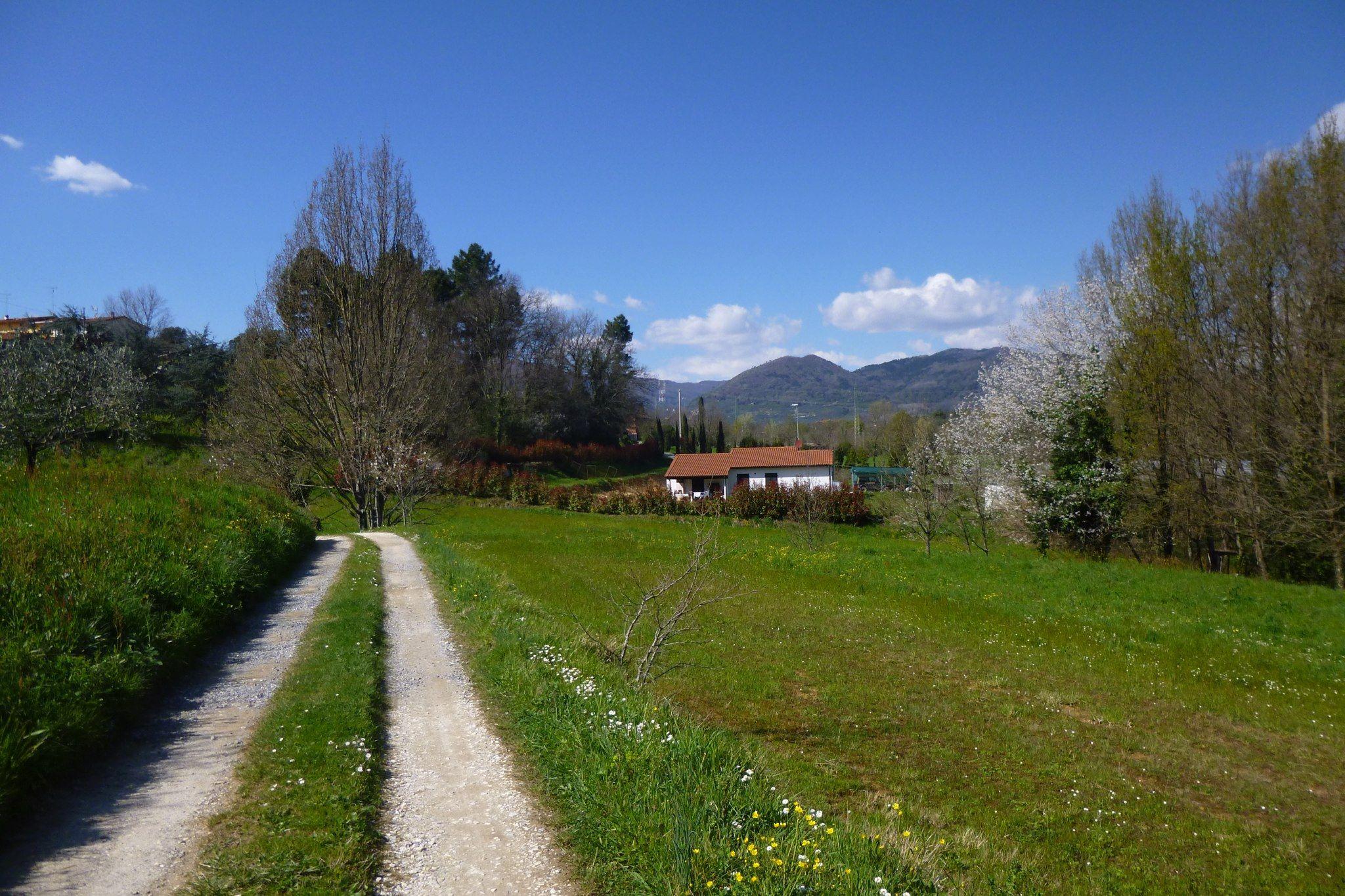 Montecarlo Toscana