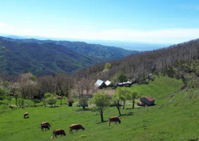 escursione-mountainbike-svizzera-pesciatina-1