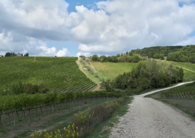 escursione-mountain-bike-chianti-4