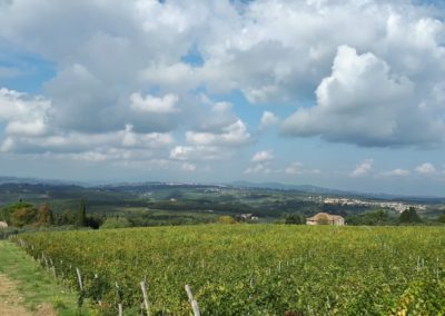 escursione-mountain-bike-chianti-5