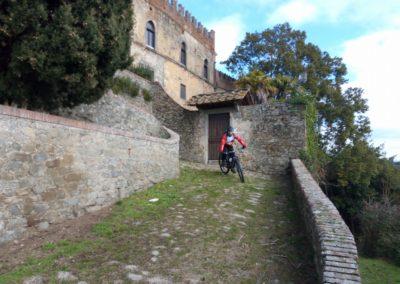 cozzile-mountain-bike