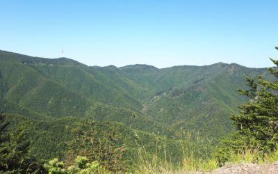 Da Torri a Torri, in mountain bike sulla montagna pistoiese