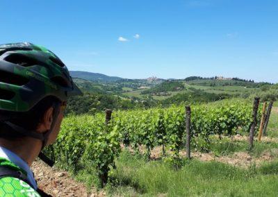 Vista San Gimignano