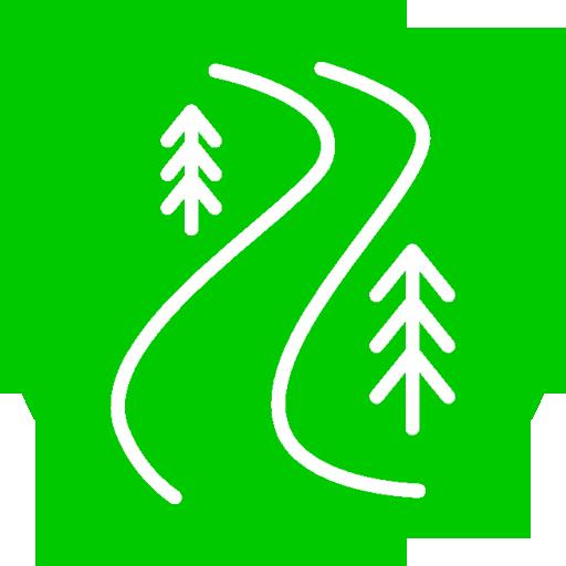 Trail MTB